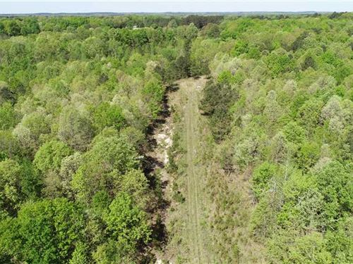 65 Acres Tippah CO Blue Mountain MS : Blue Mountain : Tippah County : Mississippi