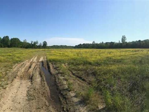 68 Acres in Prentiss CO Booneville : Booneville : Prentiss County : Mississippi