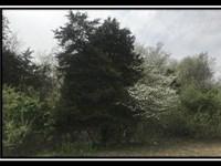 1781 N 3 Bs And K Road : Sunbury : Delaware County : Ohio