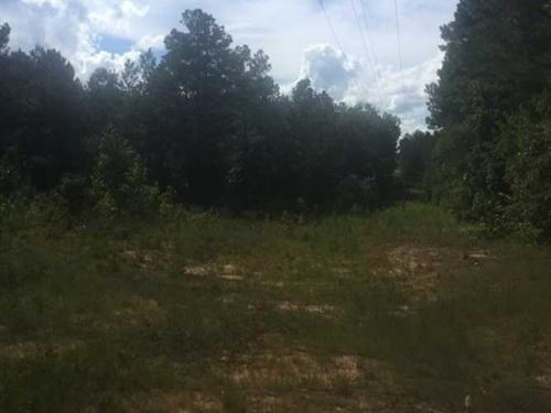 160 Acres Mt, Gilead Rd Tremont : Tremont : Itawamba County : Mississippi