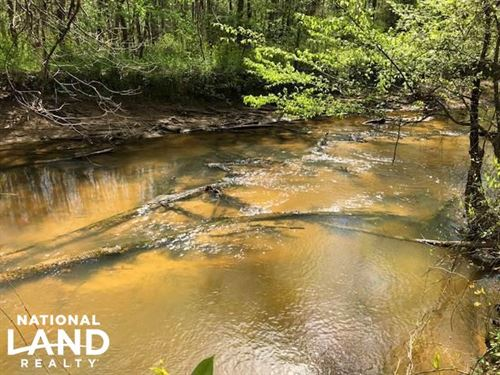 Calabrella Creek Hardwood-Hunting : Tomnolen : Webster County : Mississippi