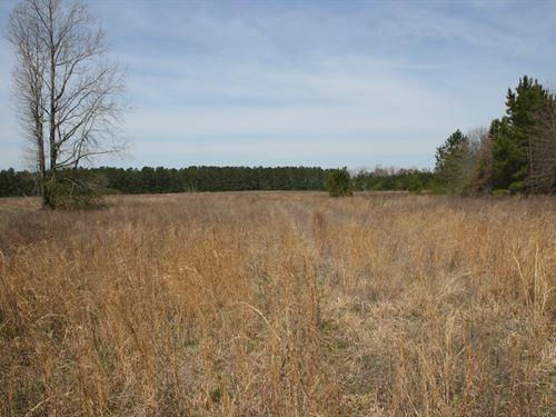 McMillan Family Tract : Lumber Bridge : Robeson County : North Carolina