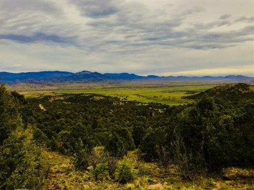 Pinon Hills Ranches, Parcel 9 : South Fork : Rio Grande County : Colorado