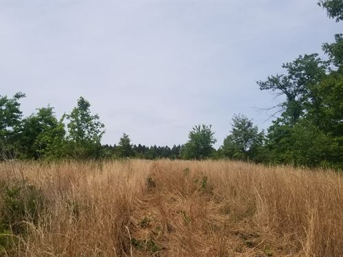 15+/-Acres Views Of Sherwood Valley : South Pittsburg : Marion County : Tennessee