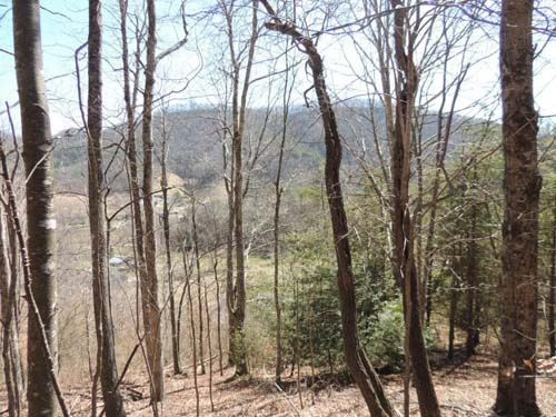 Recreational Land With Homesite : Chilhowie : Bedford County : Virginia