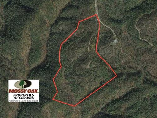 42 Acres of Residential And Recrea : Clifton Forge : Alleghany County : Virginia