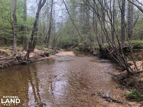 Bull Mountain Hunting Tract : Vina : Marion County : Alabama