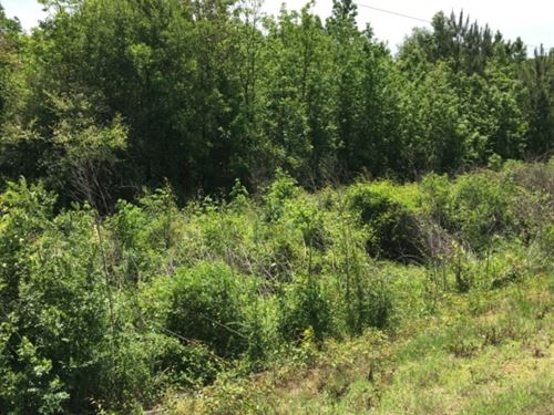 50 Acres In Madison County In Canto : Canton : Madison County : Mississippi