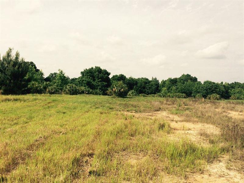 Owner Financing 105 Acres Hilltop : Ranch for Sale : Brooksville : Hernando  County : Florida