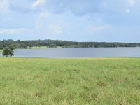 Owner Financing 36 Acre Lakefront : Brooksville : Hernando County : Florida