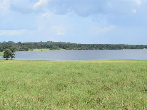 Owner Financing 36 Acre Lakefront : Brooksville : Hernando County : Florida
