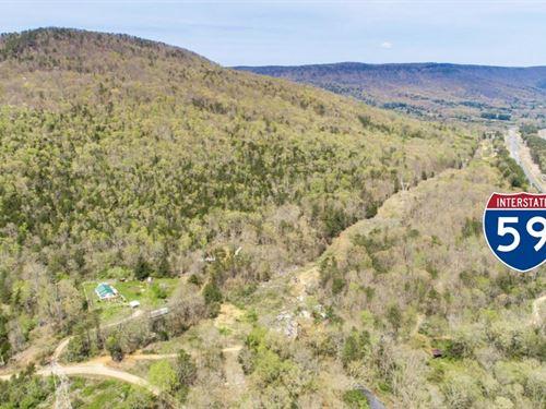 Own 611+/- Acres Of Mountain Land : Trenton : Dade County : Georgia