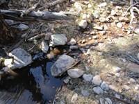 Lucero Canyon Ranch : Capitan : Lincoln County : New Mexico