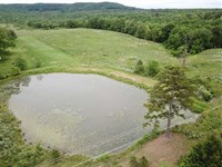 78 Acres With 2 Ponds, Hayfiel : Clinton : Van Buren County : Arkansas