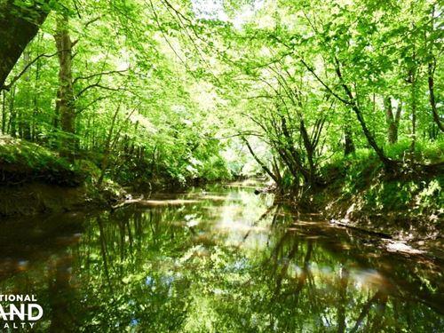 Kerr Lake Hunting Land : Henderson : Vance County : North Carolina