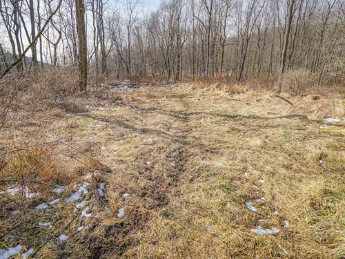 Cullison Rd, 24 Acres : Frazeysburg : Licking County : Ohio