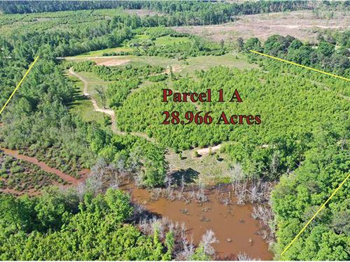 Great Hunting Home Site Property : Barnesville : Lamar County : Georgia