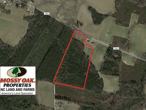 25.5 Acres of Farm And Timber Land : Whiteville : Columbus County : North Carolina
