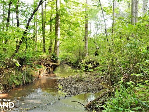 Camp Creek Mini Farm And Homesite : Green Pond : Bibb County : Alabama