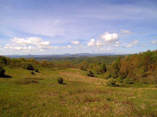Large Acreage, Trout Stream : Mouth Of Wilson : Grayson County : Virginia
