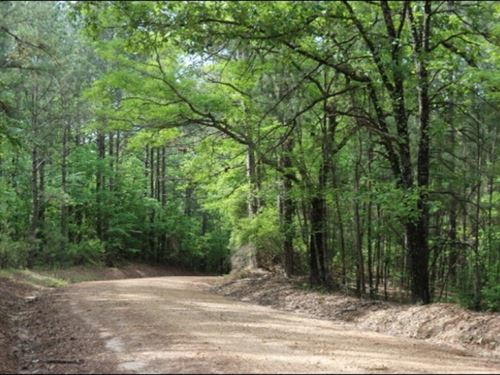 77 Acres In Winston County In McCoo : McCool : Winston County : Mississippi