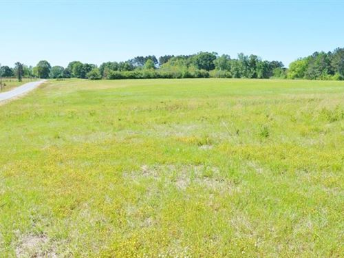 Development Property By Golf Course : Fernwood : Pike County : Mississippi