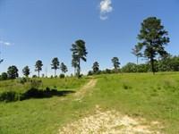 Ridgetop Farm : Hodges : Greenwood County : South Carolina