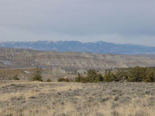 Steal Of A Deal : Bridger : Carbon County : Montana