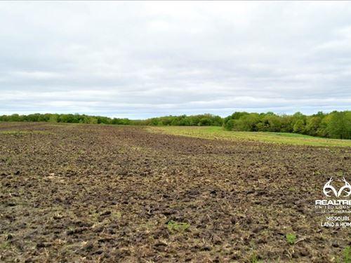 Livingston Co, MO Hunting : Chillicothe : Livingston County : Missouri