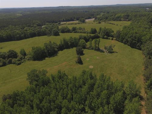 Mostly Pasture With Creek : Lineville : Clay County : Alabama