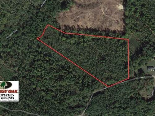 19 Acres of Residential Timber And : Champlain : Essex County : Virginia