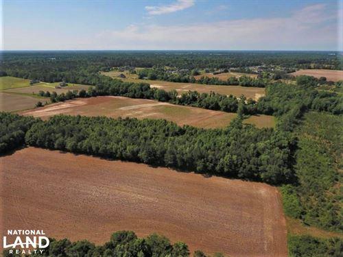 Paul's Path Rd Farm : Kinston : Lenoir County : North Carolina