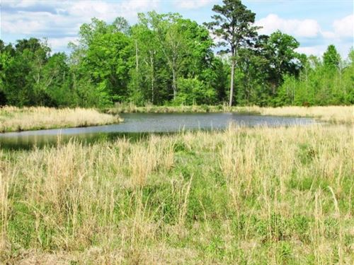 Farmland Pastureland For Sale Jaspe : Pachuta : Jasper County : Mississippi