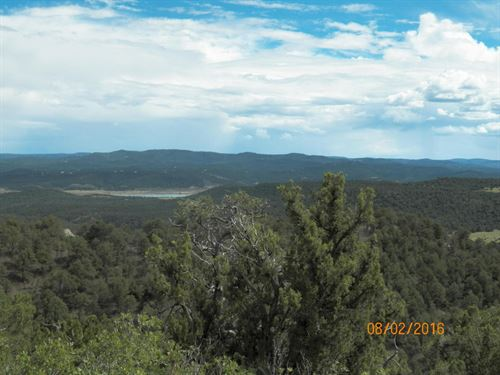 Hunting/Recreational Property : Jansen : Las Animas County : Colorado