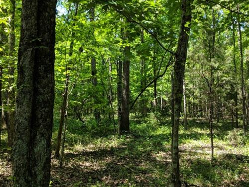 21 Acres, Chester County, Sc : Chester : South Carolina