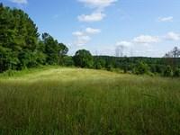Agatesville Tract : Monticello : Jasper County : Georgia