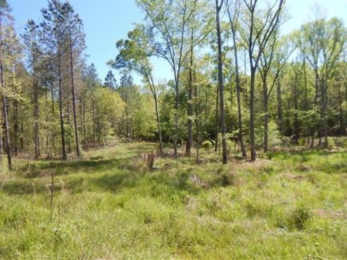 86.3 Acres In Carroll County In Car : Carrollton : Carroll County : Mississippi
