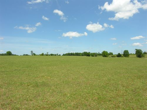 787+- Acres On Brier Creek : Waynesboro : Burke County : Georgia