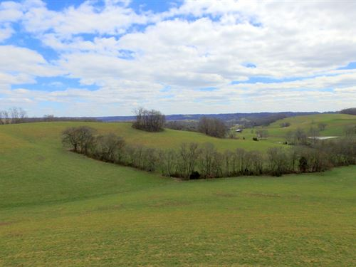 Gently Rolling 57 Acre Farm : Santa Fe : Maury County : Tennessee