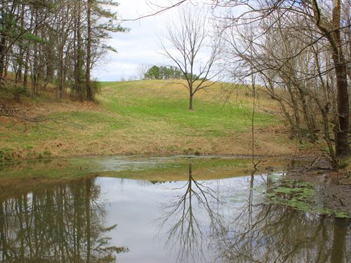 Beautiful 56 Acre Farm : Santa Fe : Maury County : Tennessee