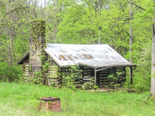 Barr Hollow Rd, 87 Acres : Reedsville : Meigs County : Ohio
