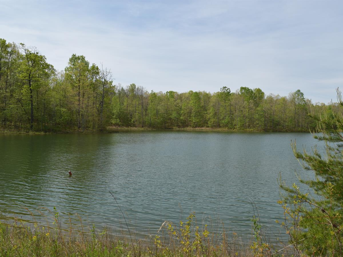 Infinite Possibilities : Ranch for Sale : Altamont : Grundy County :  Tennessee