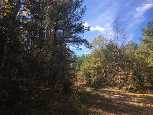 65 +/- Acres Hale County, Alabama : Moundville : Hale County : Alabama