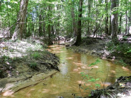 Timber Investment & Hunting : Toomsboro : Wilkinson County : Georgia