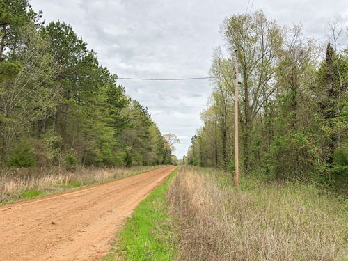 114 Acres Cr 4268 Tract 1004 : Simms : Bowie County : Texas