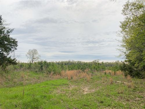 35 Acres Cr 4507 Tract 1004 : Simms : Bowie County : Texas