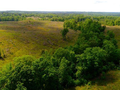 120 Acres, Pinchoulee Creek : Rockford : Coosa County : Alabama
