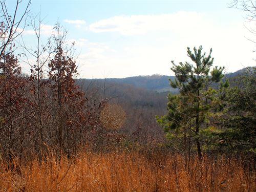 307 Acres Near Kentucky Lake : Waverly : Humphreys County : Tennessee