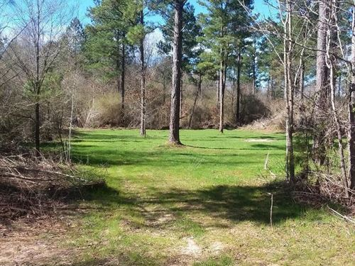 126 Acres Near Union Mississippi : Union : Neshoba County : Mississippi