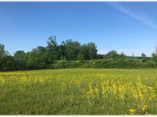 90 Acres In Lafayette County In Tha : Thaxton : Lafayette County : Mississippi